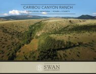 Caribou Canyon Ranch Offering Brochure 5-8-19