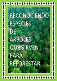 Reconociendo especies de árboles que sirven para reforestar