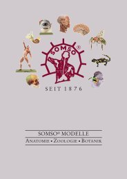 SOMSO Hauptkatalog | Biologie |Bachmann Lehrmittel
