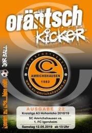 Ausgabe 22 / SCA - 1. FC Igersheim