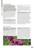 Le Lien - Page 5