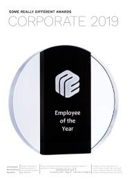 Some Really Different Trophies - Corporate 2019