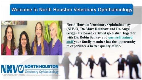 North Houston Veterinary Ophthalmology