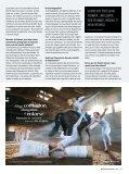 N° 4 / 2019 - Page 7