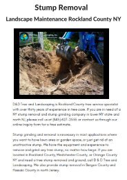 Tree Stump Removal Expert In Rockland NY