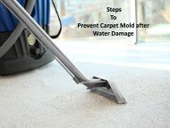 Steps to Prevent Carpet Mold after Water Damage