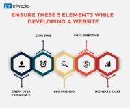 Best Website Development Company IN Gurgaon-Triwacko IT Solution