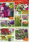 Floraland Hagebaumarkt KW 21 - Page 4