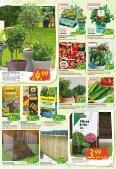 Floraland Hagebaumarkt KW 21 - Page 6