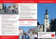 SPD Flyer_SVV_FORST_LRonline