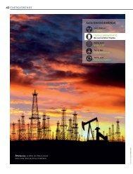 Fossile Brennstoffe: Die Welt am Tropf - Weshalb ... - Daniele Ganser