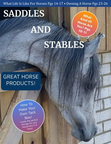 Saddles and Stables