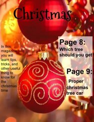 Christmas Mag