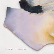 Trevor Bell 'Trans-Form'