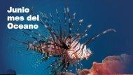 Carlos Luis Michel Fumero - Mes del Oceano