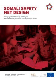 Safety Net Design Analysis for Somalia