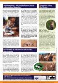 Giraffen... sie verschwinden fast unbemerkt - Seite 4