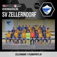 Online Zellerndorf