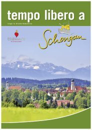 Schongau_Image_2014_IT_EZ