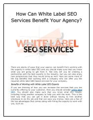 How Can White Label SEO Services Benefit Your Agency