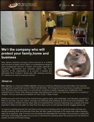 Commercial Pest Management Dubai