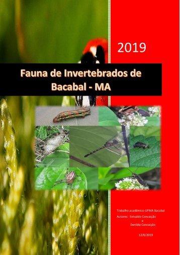 INVERTEBRADOS DA FAUNA DE BACABAL-1
