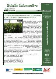 Boletín-nº65-junio-2019
