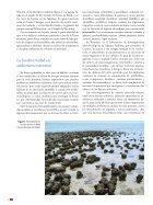 Microorganismos - Page 3
