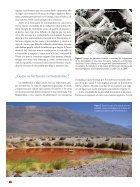 Microorganismos - Page 5