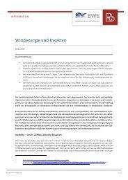BWE Infopapier Windenergie und Insekten