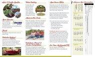 Caladium Festival Brochure