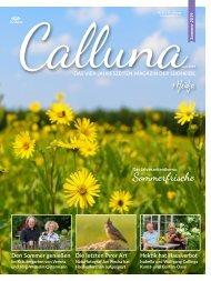 Calluna Sommer 2019