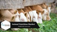 GLOBAL ANIMAL NUTRITION MARKET | TRENDS, ANALYSIS, FORECAST 2019-2027