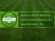 GoMow - Best Weekly or Bi-weekly lawn care services in San Antonio, Tx