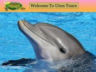 Tours by Locals Jamaica
