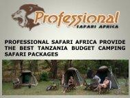 PROFESSIONAL SAFARI AFRICA PROVIDE THE BEST TANZANIA BUDGET CAMPING SAFARI PACKAGES