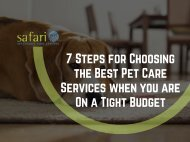 7 Steps for Choosing the Best Pet Care Services when you are On a Tight Budget