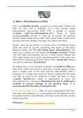 العالمي لمرض بيلة فينيل كيتون -Phénylcétonurie - Page 5