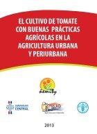 cultivo de tomate - Page 3