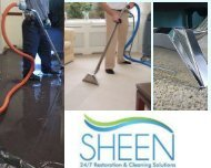 Upholstery Cleaning Wynwood