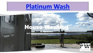 Platinum Wash