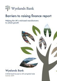 Wyelands Bank - Barriers to raising finance report
