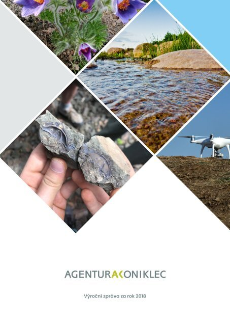 Výroční zpráva AK za rok 2018