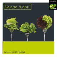 Catalogue salade d'abri 2019-20