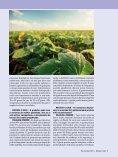 Revista C. Vale - Maio/Junho de 2019 - Page 7