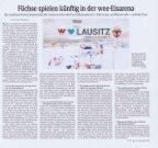 01.07.2019 Sächsische Zeitung: weeEisArena