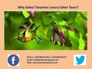 Why Select Tanzania Luxury Safari Tours