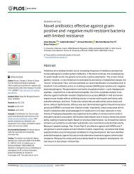 Novel antibiotics effective against grampositive and -negative multi-resistant bacteria with limited resistance