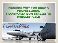 Reasons Why You Need a Professional Transportation Service to Wrigley Field