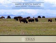 Rapelje Bison Ranch Offering Brochure